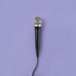 Saiba tudo sobre o pedestal para microfone vector